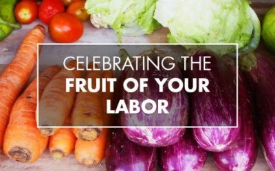 Vicenta's Story: Celebrating The Fruit of Your Labor